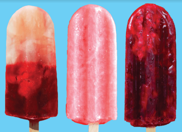 Revolution Artisan Pops popsicles fort collins gourmet